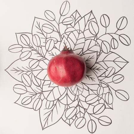Pomegranate over outline floral hand drawn background