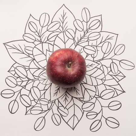 Red apple over outline floral hand drawn background Banco de Imagens