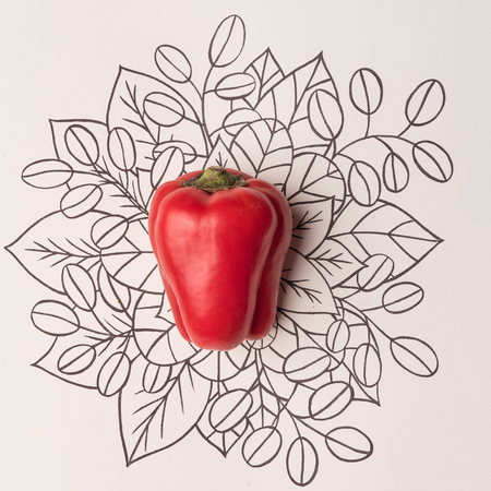 Red bell pepper over outline floral hand drawn background