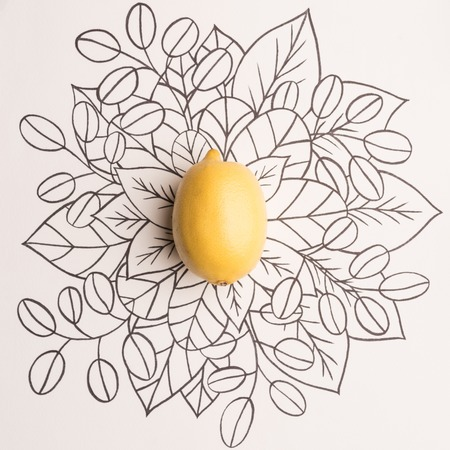 Lemon over outline floral hand drawn background