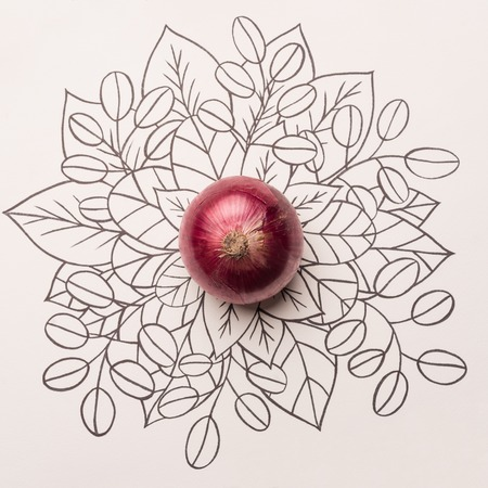 Red onion over outline floral hand drawn background