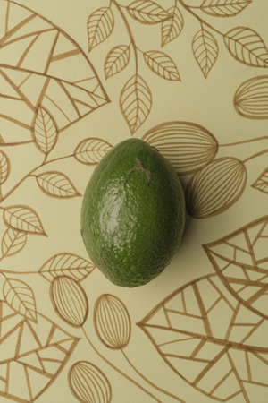 Avocado over outline floral drawn background