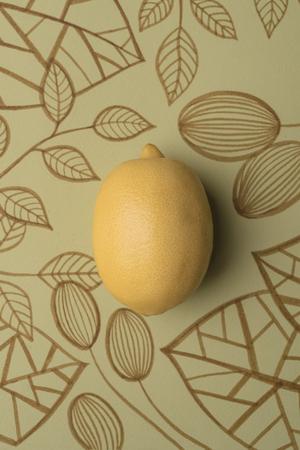 Lemon over outline floral drawn background Banco de Imagens - 91707117