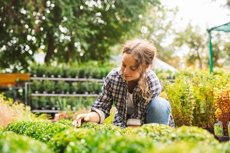 Attractive beautiful woman gardener with water can working near flowers in greenhouse Stock Photo