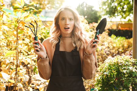 Image of a shocked young woman gardener at the workspace over plants. Stock Photo