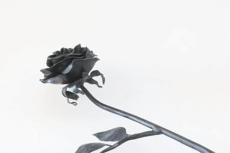 furnish: Forged metal products. Flowers and leaves are forged and coated with a primer. design elements. On a white background.