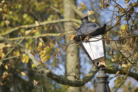 Lighting a lantern in a retro style on a background of autumn leaves