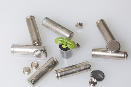 accumulator: Batteries and green sprout. Recycling and disposal of batteries. Care for ecology. Stock Photo