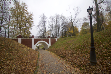 fallen tree: Autumn landscape in the city park. On the ground a carpet of fallen yellow leaves of different shades. From the walkway, you can see a pedestrian bridge and an arch.
