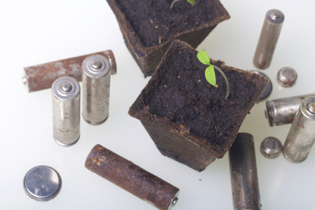 Young green shoots of sprouts in peat containers. They are surrounded by worn out batteries, coated with corrosion. Environmental pollution and recycling. Stockfoto