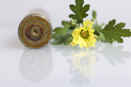 Shooting sleeve from a large-caliber machine gun and a yellow chrysanthemum flower. Establishment of peace. Stock Photo