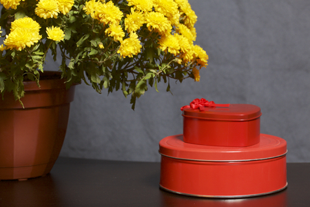 Autumn flowers in a pot. Yellow Chrysanthemum. Next gifts in tin boxes. On a gray background.