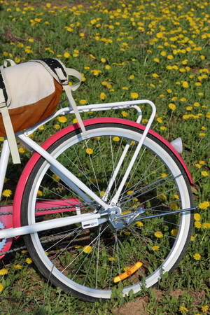 Bicycle stands in the spring glade. Next tourist backpack. Dandelions are blooming.