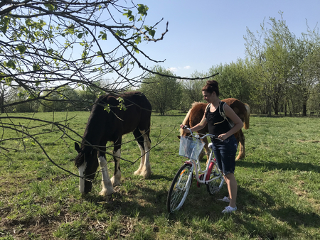 The girl with the bicycle approached the horses grazing in the meadow. Behind the girls backpack, headphones in their ears.