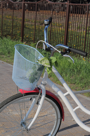 A walking bike is at the bus stop. In the basket is a bouquet of flowers.