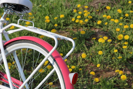 Bicycle stands in the spring glade. Dandelions are blooming.