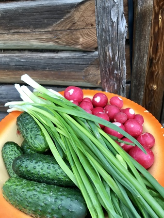 Vegetables for a barbecue lie on a dish.  Fresh cucumbers, juicy green onions and red radish.  Against the background of the wooden wall of the old barn. Stockfoto