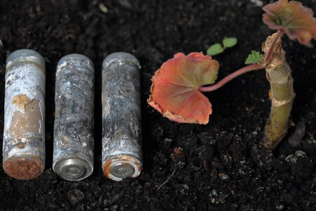 Spent batteries lie on the ground. Covered with corrosion. A fading plant grows from the ground. Recycling and environmental protection.
