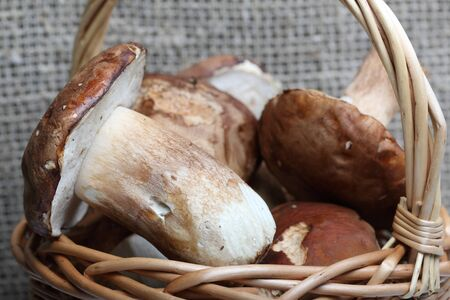 Wicker basket with porcini mushrooms and a bunch of blooming heather. Shot on a background of rough linen cloth. Close up. Stok Fotoğraf