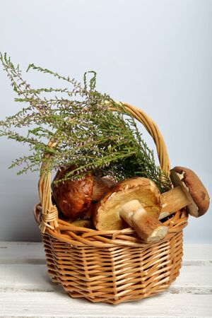 Wicker basket with porcini mushrooms and a bunch of blooming heather. It stands on a wooden box of white painted boards. Stok Fotoğraf