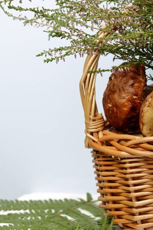 Wicker basket with porcini mushrooms and a bunch of blooming heather. Shot close up on a white background.  Near a leaf of fern.
