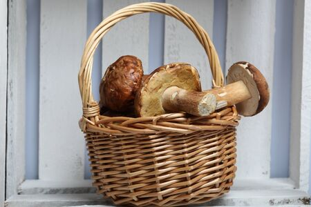 Wicker basket with porcini mushrooms. It stands in a wooden box of white painted boards.