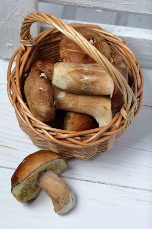 Wicker basket with porcini mushrooms. Nearby lies one mushroom.