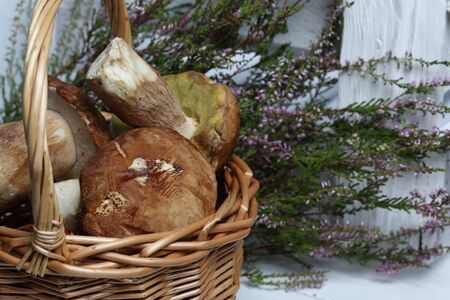 Wicker goat with porcini mushrooms. In the background is a bunch of blooming heather and a box of white painted boards.