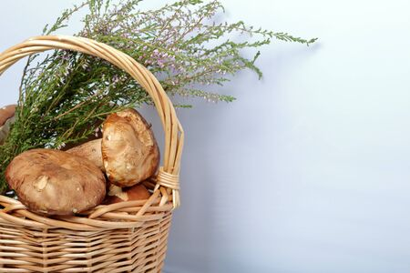 Wicker basket with porcini mushrooms and a bunch of blooming heather. Shot close up on a white background. Stok Fotoğraf