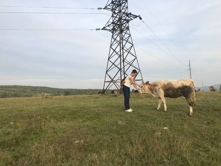 A girl with a backpack behind her. She went to a herd of grazing cows. Stroking one of them.