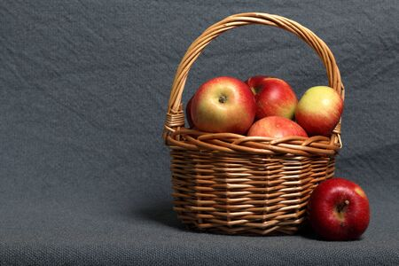Wicker basket with ripe juicy apples. Nearby are a few apples. New crop. On a gray background.