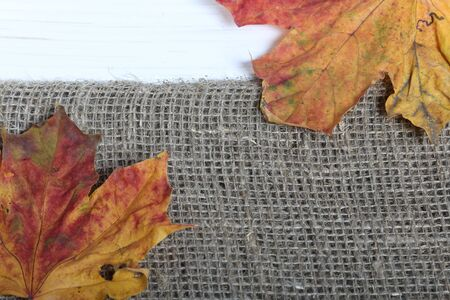 Colorful autumn leaves on a background of rough linen cloth. Stock Photo - 131477865