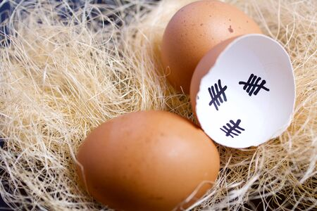 Chipped eggshell in the nest. It marks the days past. Nearby a whole egg. Chicken hatching.