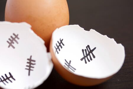 Chopped eggshell. It marks the days past. Nearby a whole egg. Chicken hatching.