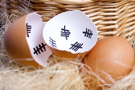 Chipped egg shell and egg in the nest. In the shell past days are marked with dashes. Chicken hatching.