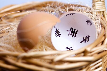 Chipped egg shell and egg in the nest. In the shell past days are marked with dashes. Chicken hatching. Reklamní fotografie