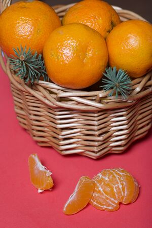 Tangerines in a wicker basket. Next to the basket is peeled mandarin. Visible slices of mandarin and skin from it. Branches of green spruce. Against the background of coral color.