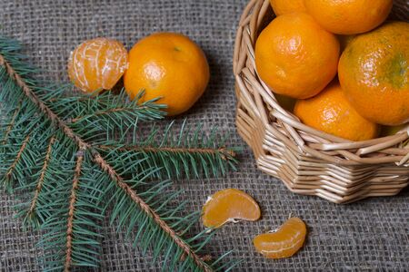 Tangerines in a wicker basket. Next to the basket is peeled mandarin. Visible slices of mandarin and skin from it. Branches of green spruce. Against the background of linen fabric.