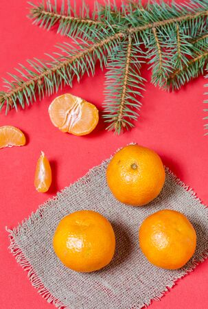 Tangerines are folded on linen. The peeled mandarin is visible, its segments are visible. Near a branch of blue spruce. On a coral background. Stock Photo