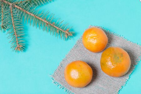 Tangerines are folded on linen. Near a branch of blue spruce. On a mint background. Stock Photo