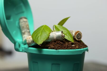 Trash bin filled with earth. A sprout grows in it. Nearby are spent batteries coated with corrosion. World Environment Day.