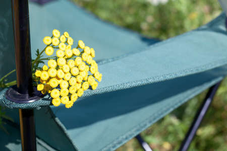 Fragment of a camping chair with a bouquet of tansy. Stands on the grass of a summer meadow.