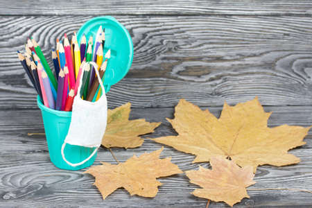 Colored pencils in a pencil holder. They are wearing a medical mask. Nearby are dried maple leaves. A pencil case in the form of a trash can. On brushed pine boards painted black and white.