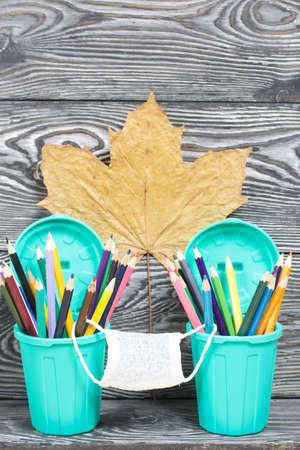 Colored pencils in pencil holders. They are wearing a medical mask. Nearby is a withered maple leaves. A pencil case in the form of a trash can. On brushed pine boards painted black and white.