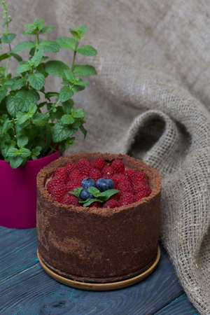 No-bake chocolate cake with cream cheese. Garnished with raspberries, blueberries and mint leaves. Nearby is a pot of growing mint. On the surface of pine boards painted in black and green.