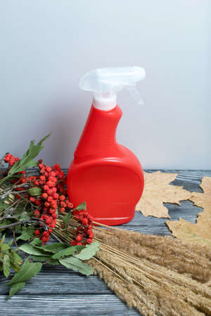 Plastic spray bottle with antiseptic. Around is a bouquet of dried grass, rowan branches and dried maple leaves. They lie on black pine boards.