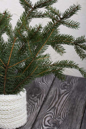 Branches of green spruce stand on pine boards. Against a background of white plaster.