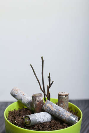 A flower pot with a withered plant. It contains corroded used batteries. Environmental protection and waste recycling. Reklamní fotografie