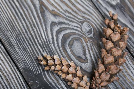 Larch cones. On black pine boards.