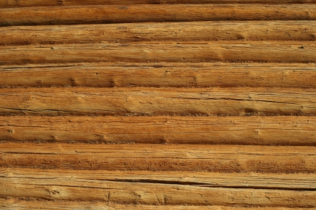 Wood Background Standard-Bild